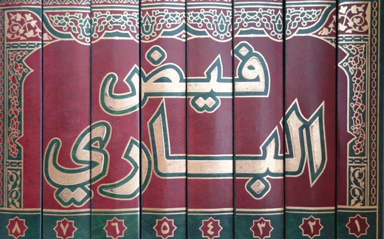 Profile of Mawlana Muhammad Badr Alam Mirti