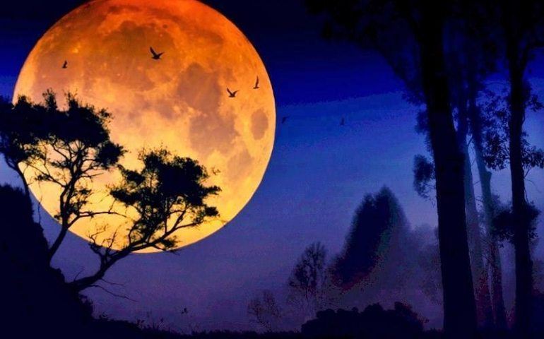 Allah's 'Signature' in the Moon