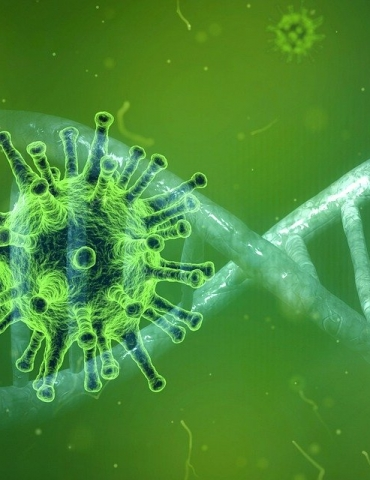 Coronavirus deaths and ruling on Ghusl